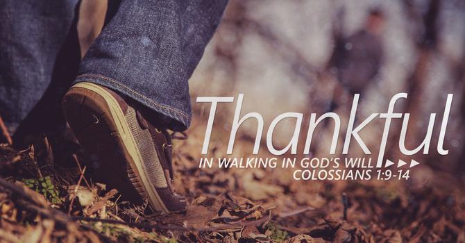 Thankful in Walking in God's Will