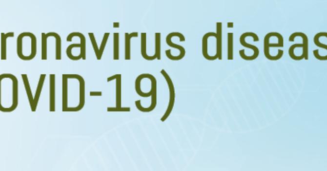 Novel Coronavirus – COVID-19 image
