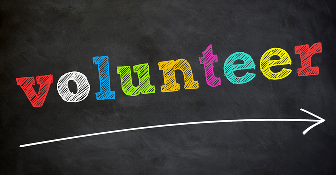 New volunteer opportunities on our diocesan committees image