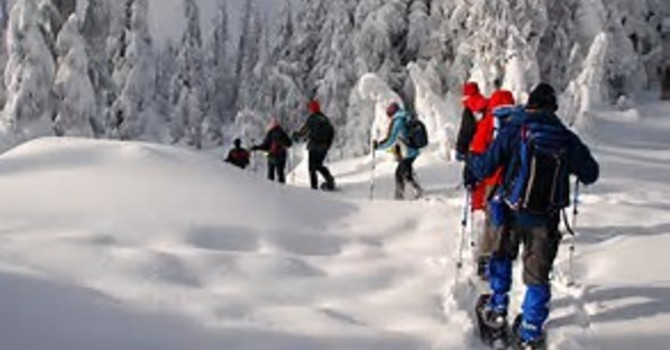 Catholic Singles Snowshoe Hike