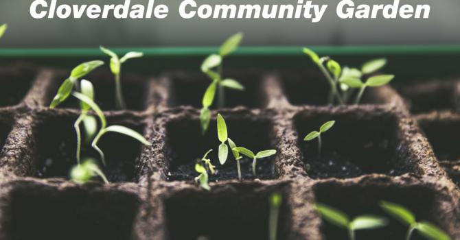 Cloverdale Community Garden image