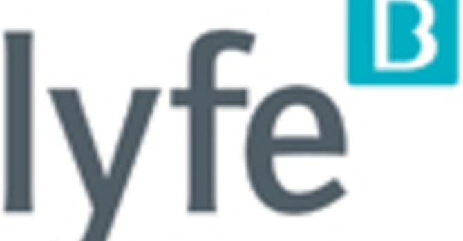 Small Group Resource: lyfe image