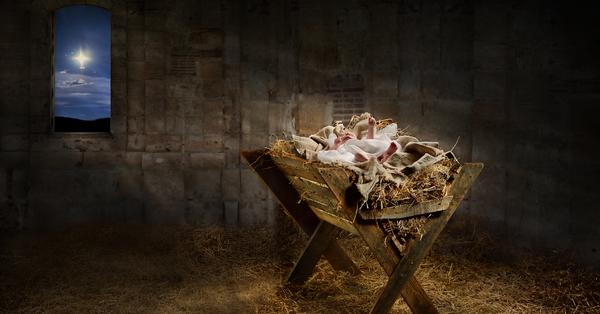 Christmas at the Manger