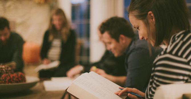 Bible Study Groups