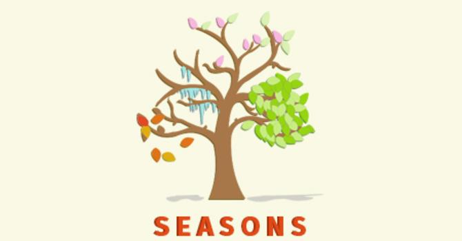 Seasons - Adults