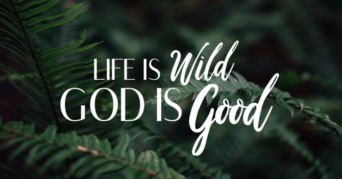 Life is Wild- God is Good