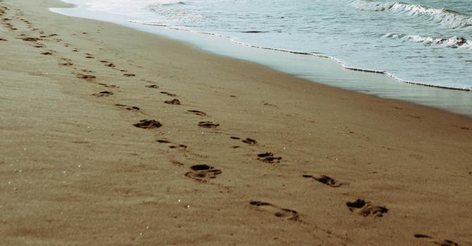 Upcoming Emmaus Walks & Chrysalis Flights image