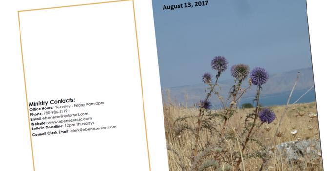 August 13, 2017 Bulletin image