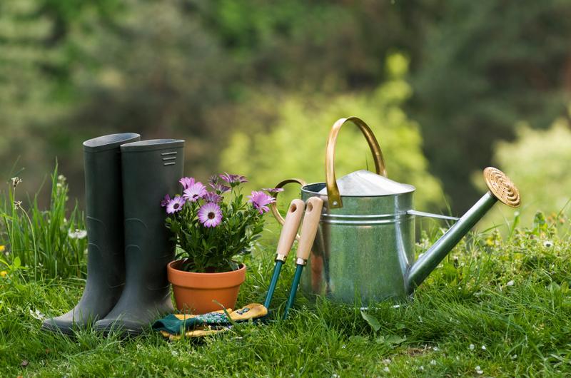 The Lazy Gardener ~ Graduation Sunday