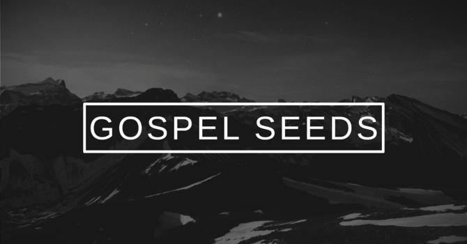 Gospel Seeds
