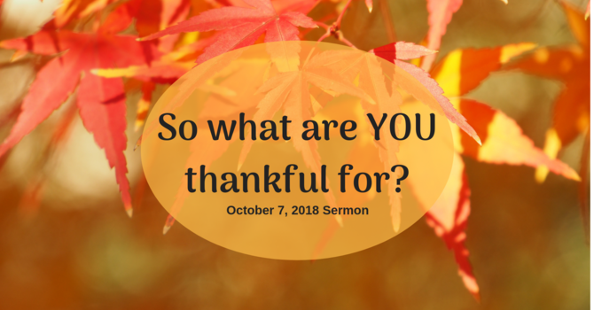 So What are YOU Thankful For?