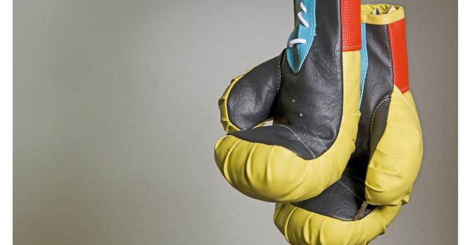 Trinity Boxing Program