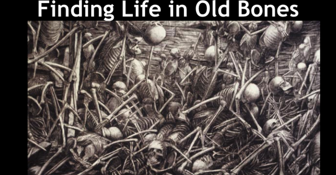 Finding Life in Old Bones
