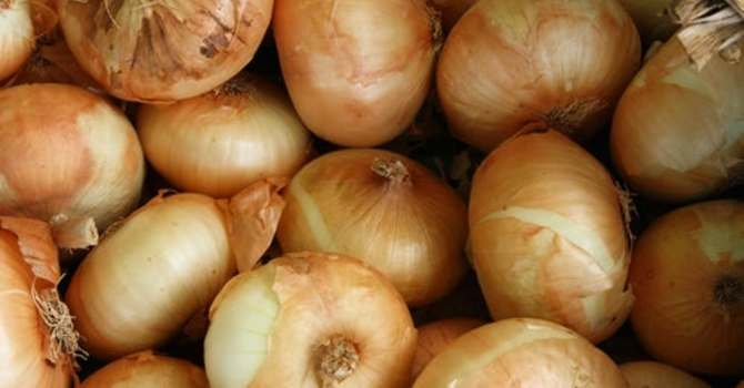 More ONIONS!   image