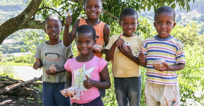 Apple Snacks to Swaziland image