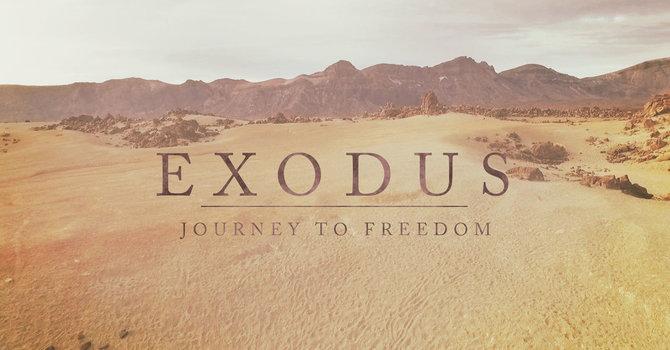 Exodus Reading: Exodus 2 image