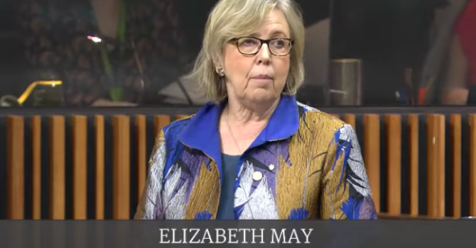 Elizabeth May MP speaks in the House of Commons on COVID-19 image