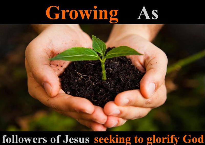 """""""Growth that is Illumined"""""""