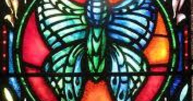 Butterfly Saints