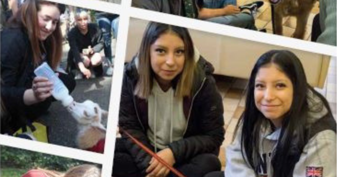UVic Multifaith Chapel Pet Cafe In the News image