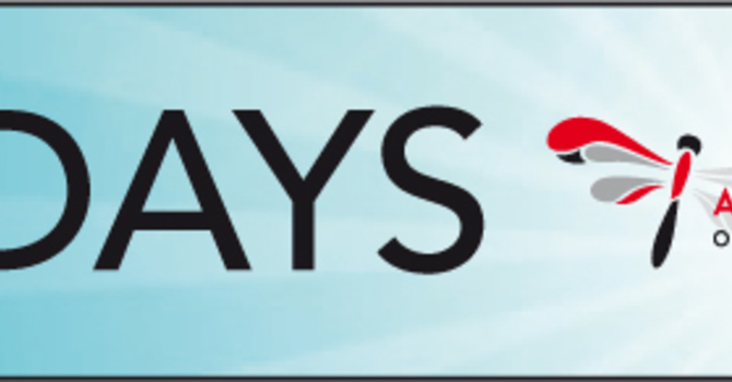Diocese Launches the 50Days Project  image