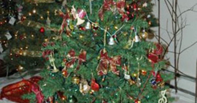 Festival of Trees at All Saints', Mission image