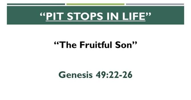 A Fruitful Son