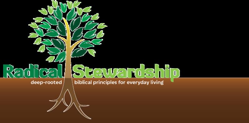 Radical Stewardship
