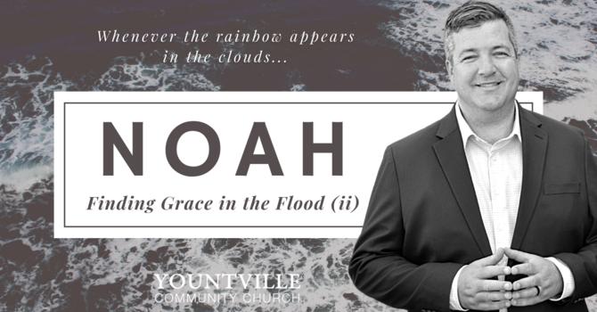 The Flood (part ii)