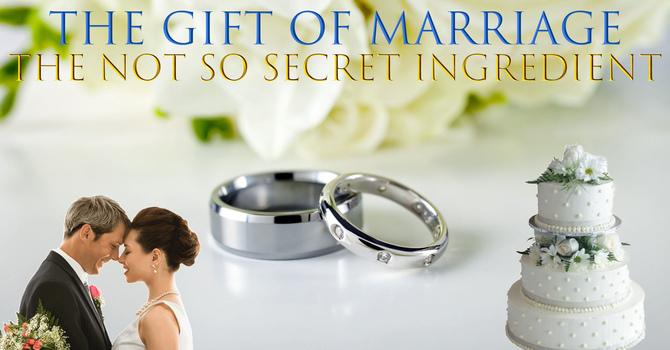 The Not So Secret Ingredient (11.15.20)