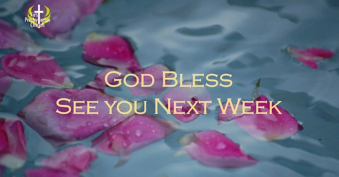 Sunday November 12 Message