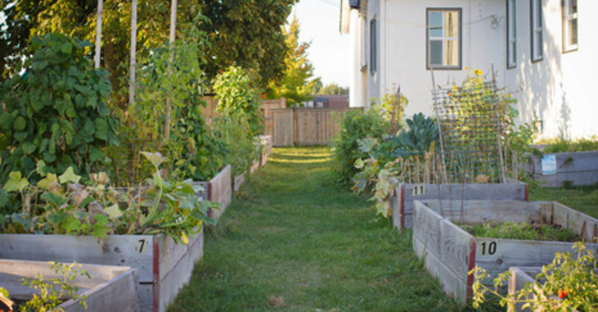 Garden of Eatin'  ~ Garden Plots Are Still Available ~ image