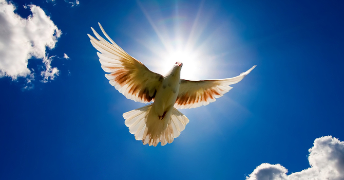 Who Is The Holy Spirit? image