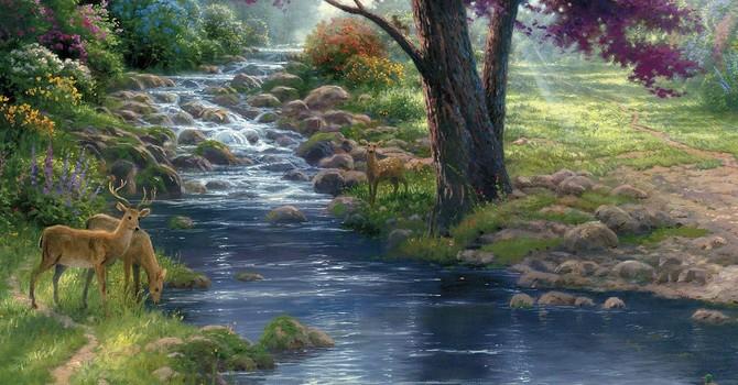 Karen Hollis Sermon – Luke 6:17-26 - Meeting God image