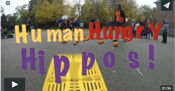 Human Hungry Hippos image