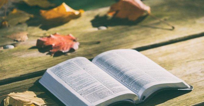 21 Bible Verses of Gratitude image