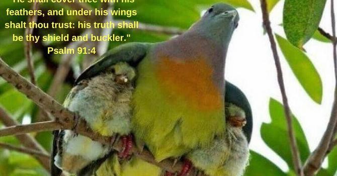 At Prayer / Bible Study image