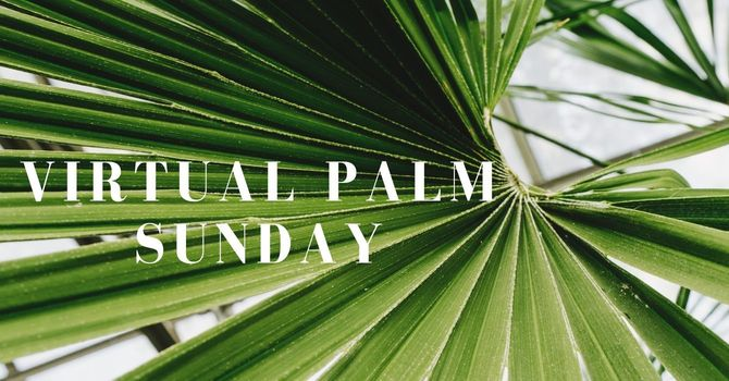 Virtual Palm Sunday image