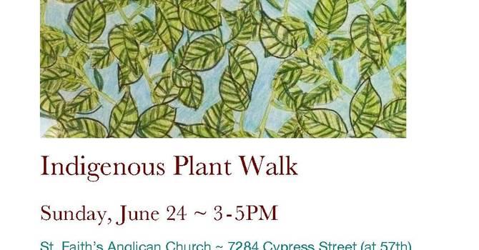 Indigenous Plant Walk