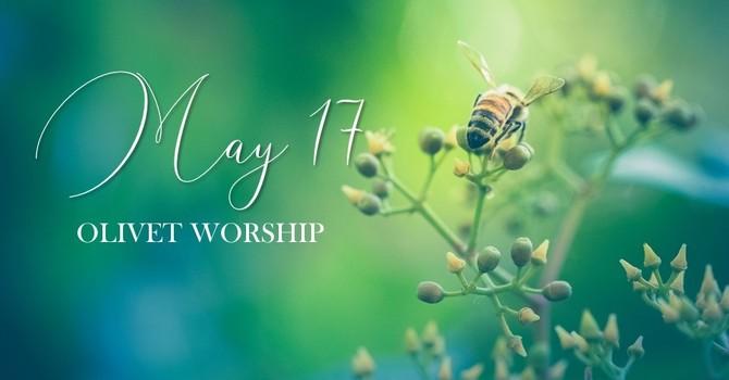 May 17 Olivet Worship image