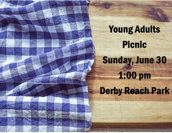 FLEFC Young Adults Picnic