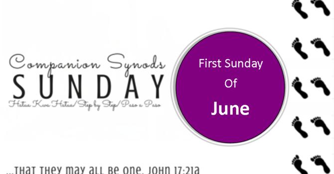 COMPANION SYNOD SUNDAY image