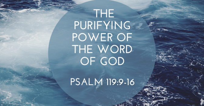 The Purifying Power of the Word of God Pt2