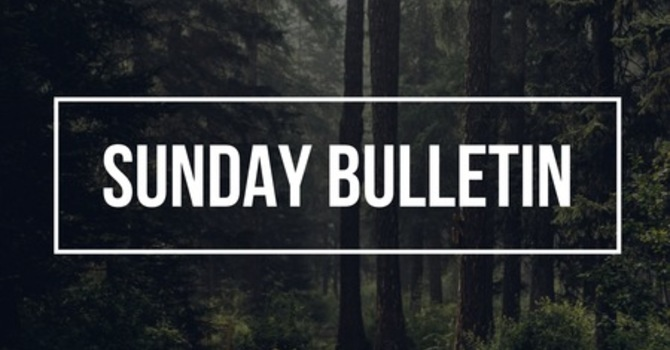 Sunday Bulletin for November 4, 2018 image