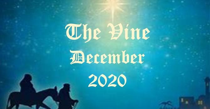 December Vine image