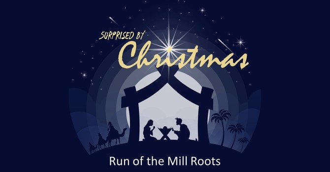 Run of the Mill Roots