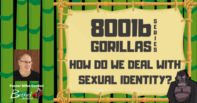 How Do We Deal With Sexual Identity?