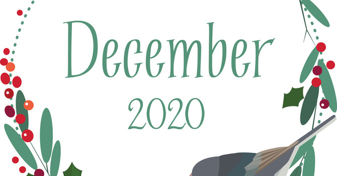 The Shepherd's Voice December 2020 image