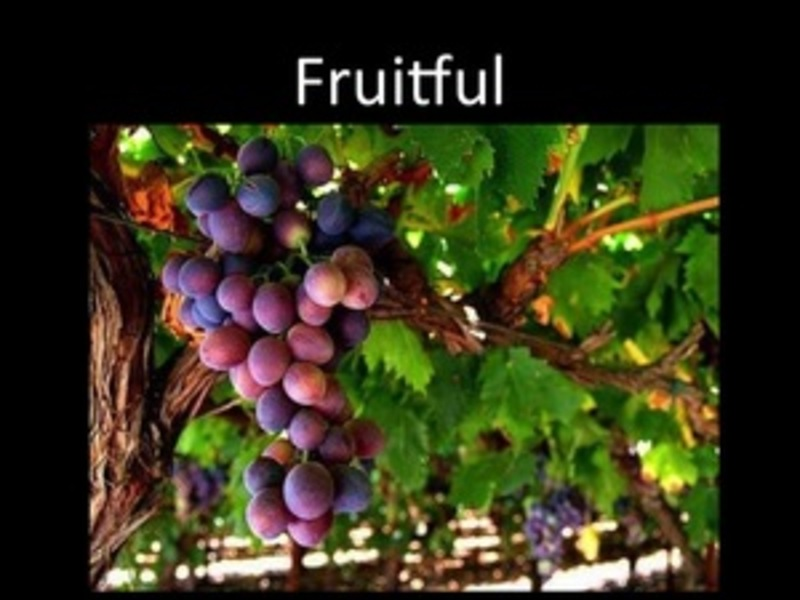 Fruitfulness: Planting with a Purpose