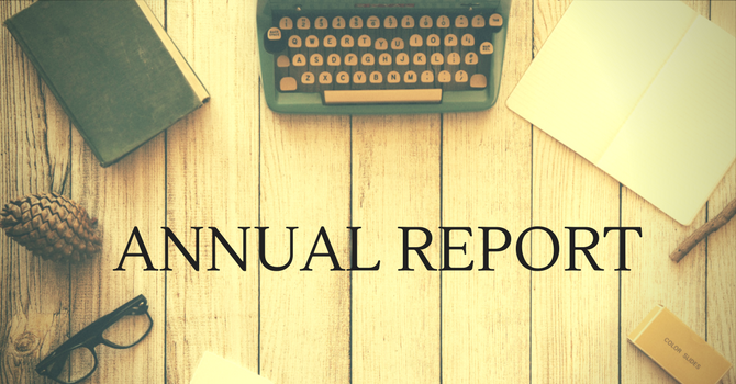 Annual Report 2016 - 2017 image